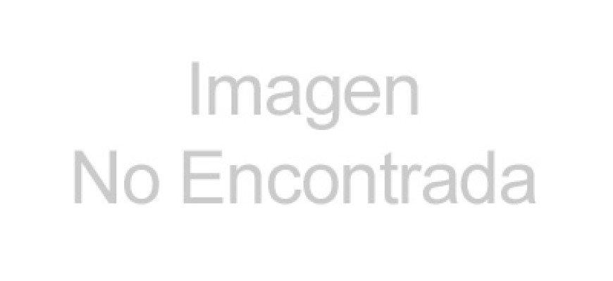 Gobierno y sociedad civil realizan campaña de reforestación en parque Cantinflas